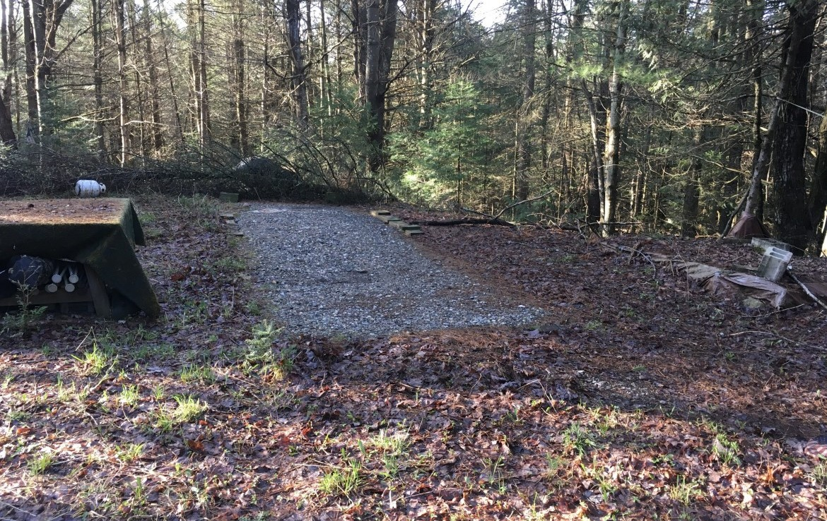 Outdoor Enthusiast and Hunter Paradise with Forests and Cabin Site with Drilled Well!