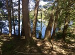 3800 Feet of Water Frontage on Flat Rock Reservoir with Campsite and Views!