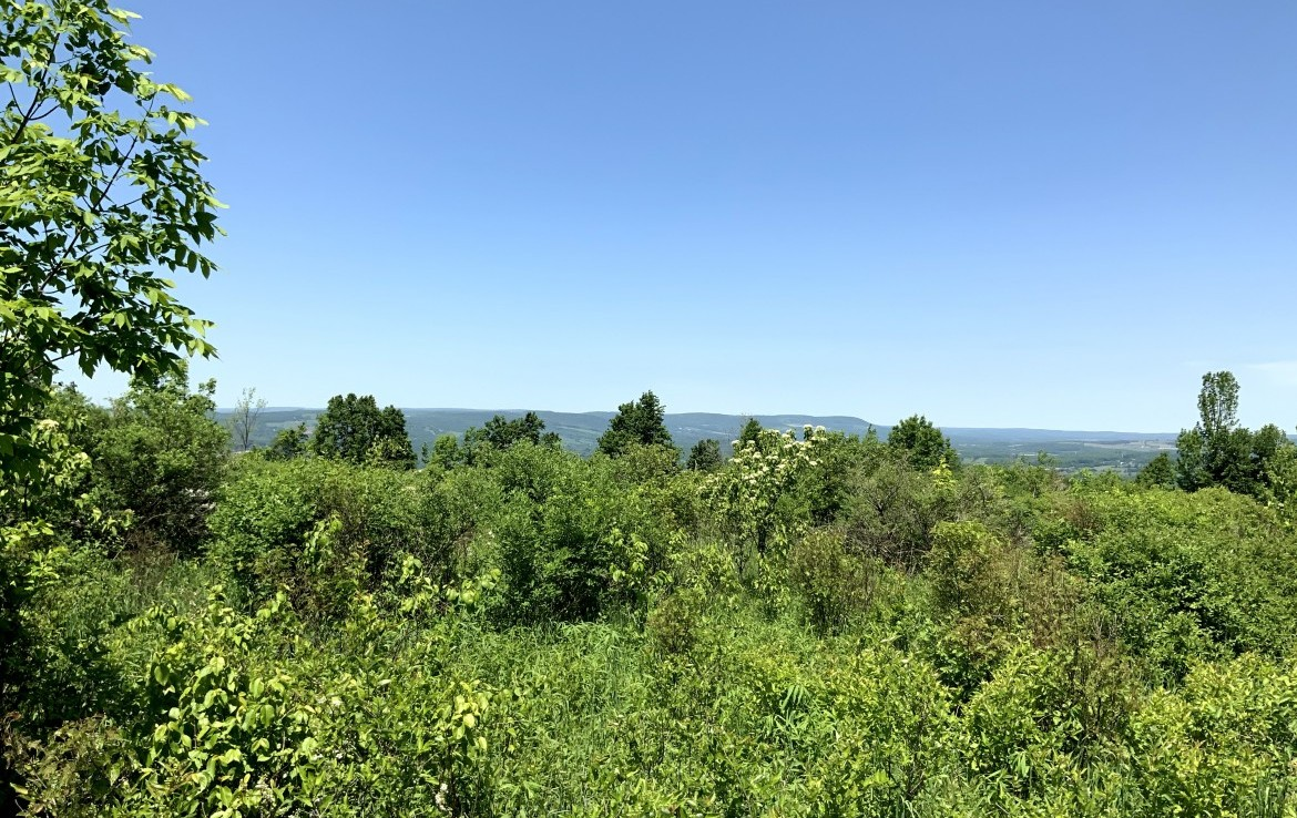 60 acre Mountain Top Views German Flatts NY
