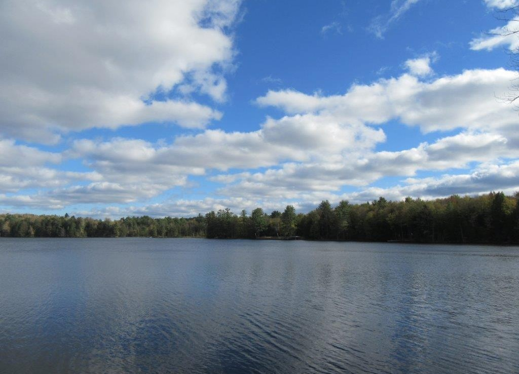 6.37 acres with 650 feet Water Frontage on Francis Lake Constantia NY!