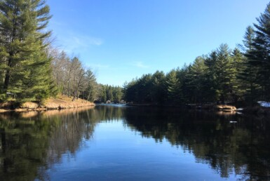 98 Acres Adirondack Waterfront in Fine NY