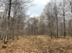 16 acres Northern Zone Hunting Land Williamstown NY