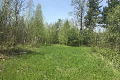 240 acres Adirondack Hunting Land Hopkinton NY