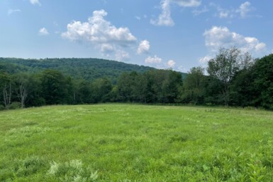 7 acres Country Land with Creek Norwich NY