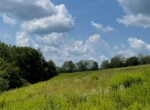 12 acre Hunting Land with Stream Norwich NY