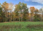 86 acres Hunting Land with Building Sites Georgetown NY